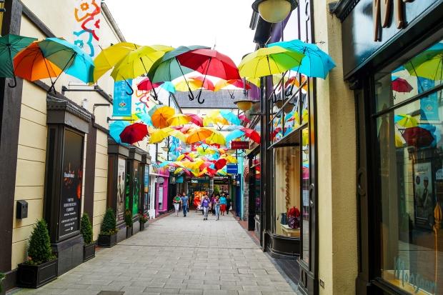 Kilkenny Volunteering Ireland